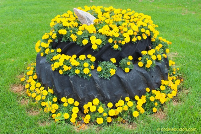 Reused Tractor Tires Make Great Garden Beds - Cookie Buxton ...